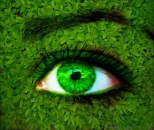 green_nature_eye_by_mu6
